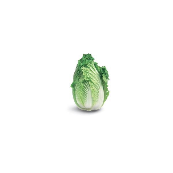 Just a picture of a Chinese cabbage