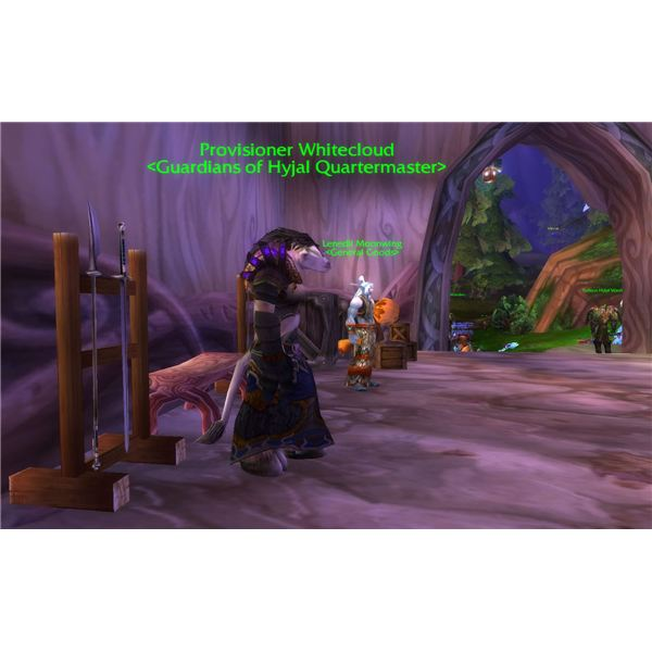 World of Warcraft Guardians of Hyjal Quartermaster Items and Location