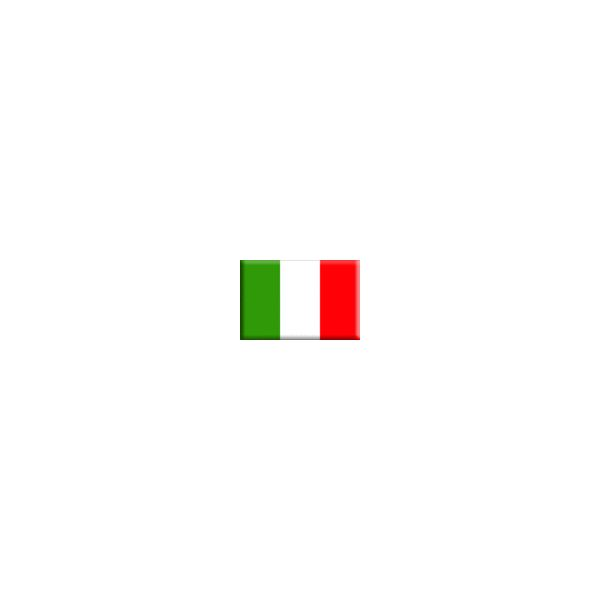 Preschool Italy Lesson Plan & Activities, Includes Assessment & Extension Activity