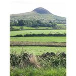 Slemish, mountain in County Antrim where St Patrick is reputed to have shepherded as a slave