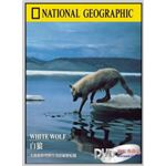 National Geographic White Wolf