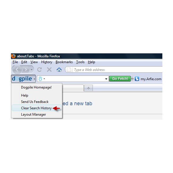 Clear Search History in Dogpile Toolbar