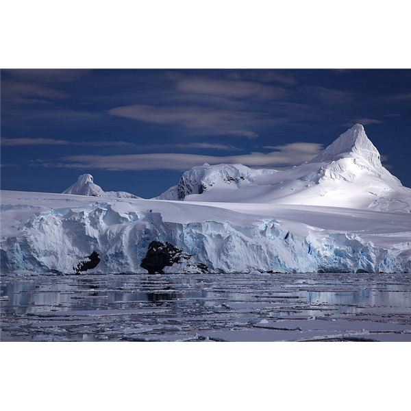 Where Do Glaciers Form? Their Origins and Their Effects on Animals and the Environment