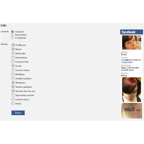 Selecting what information you would like to display on your Facebook Badge