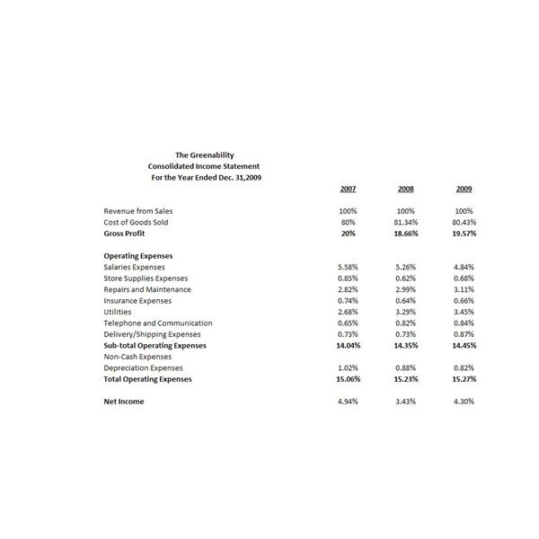 Example of Common Size Income Statement Vertical