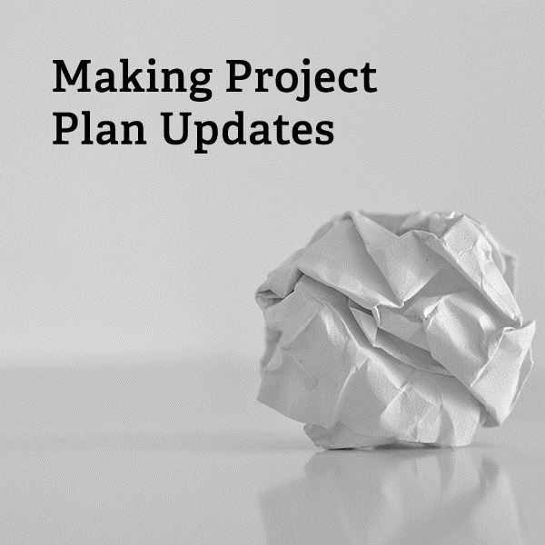 What should be included in project plan updates?