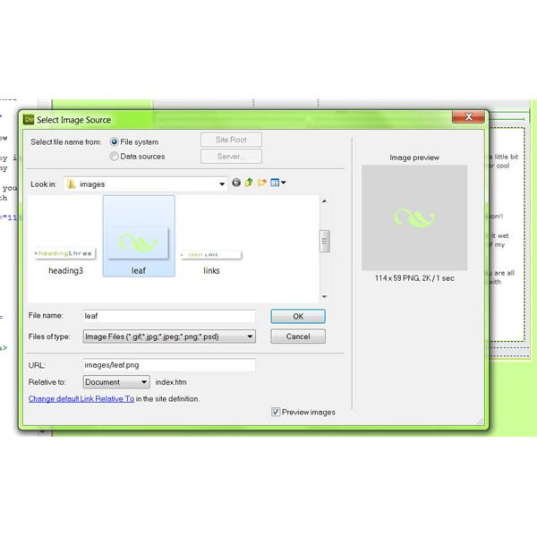 A Screen shot showing available images to insert into a website