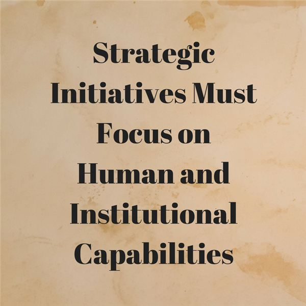 Focusing on Growing the Human and Institutional Capabilities of Project Management