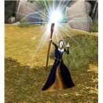 The Sims Medieval spells