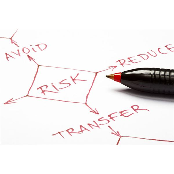 High Profile Projects and Managing Risk - Tips for Success