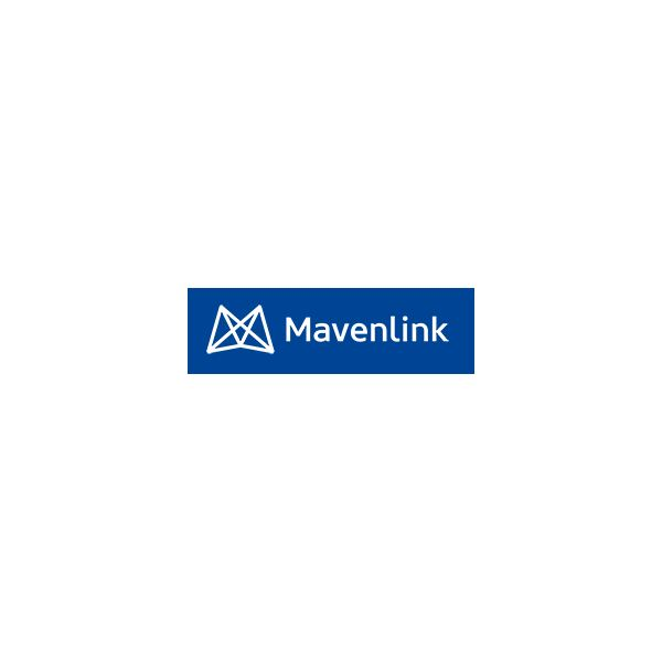 Why You Should Try Mavenlink Project Management Software: A Review