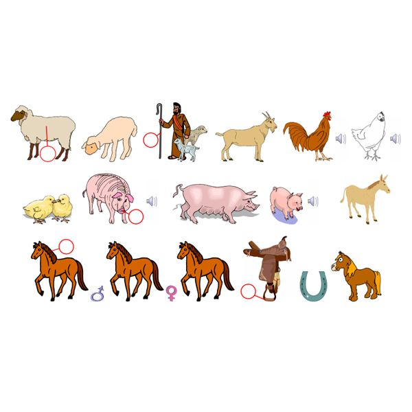 German farm animal vocabulary