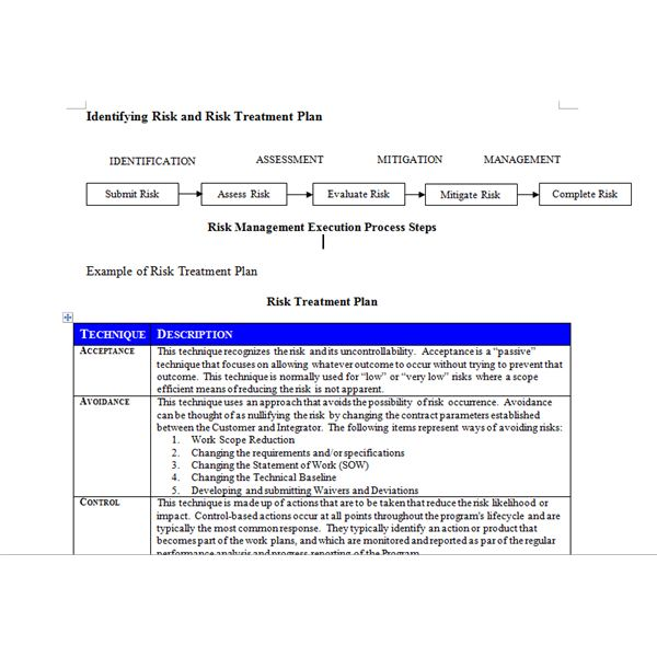screenshot of risk treatment plan example