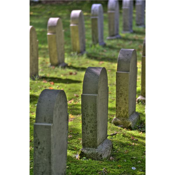 Green Funeral Options: Extend Your Eco-Conscious Attitude to Your Funeral Plans