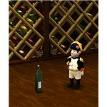Little Leon the Magical Gnome of France