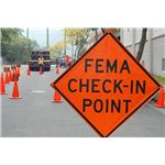Is FEMA a disaster project
