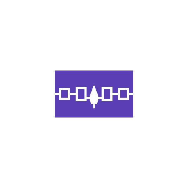 Iroquois Flag from Wikipedia