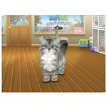 Long Haired Silver Tabby - Another Nice Kitten in FooPets