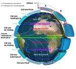 Earth Global Circulation CAT