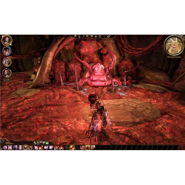Dragon Age: Origins - The Dead Trenches - Broodmother
