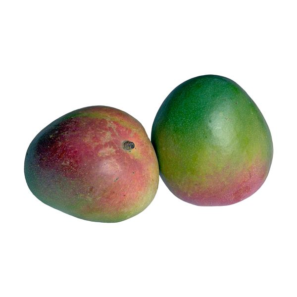 Mango Nutrition Facts - What are the Health Benefits of the Mango Fruit?