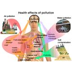 800px-Health effects of pollution.svg
