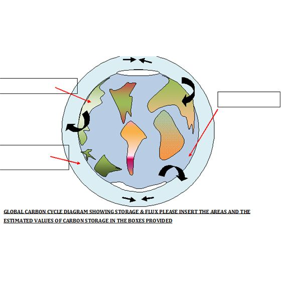 Global Carbon Cycle Diagram for Worksheet Tutorial Use