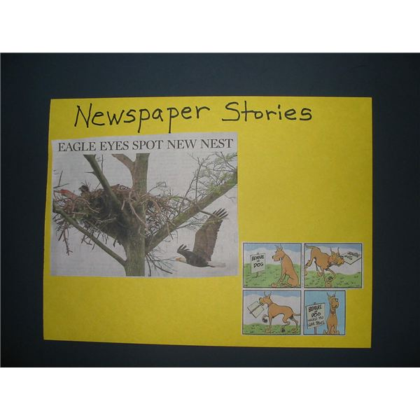 Newspaper Stories