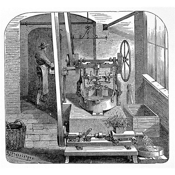 Herb and plant press