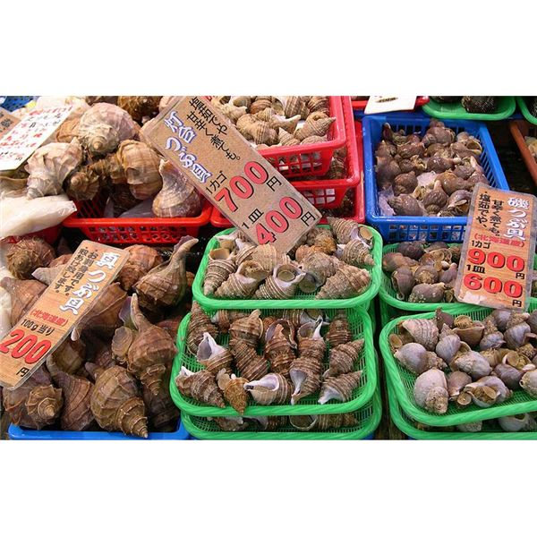 What Everybody Ought to Know About Nutrition Facts for Whelk as a Food Source