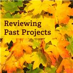 How often do you conduct project reviews?