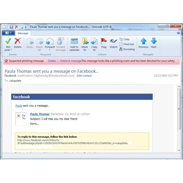 Phishing Message Blocked by Windows Live Mail Program