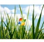 vistagrass