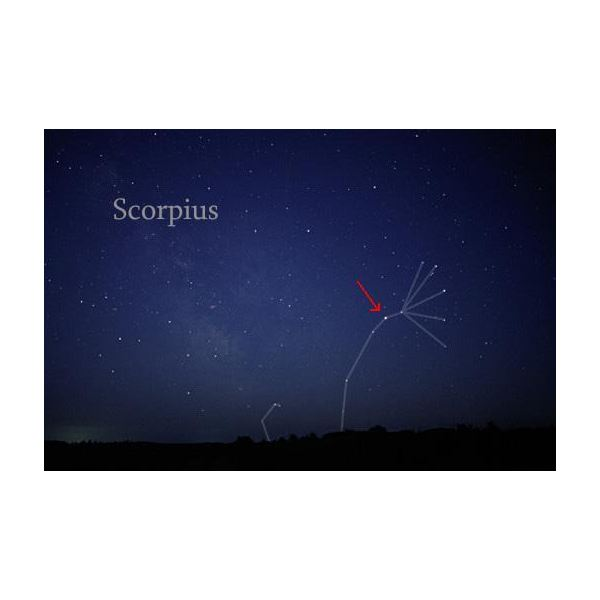 Scorpius Constellation. The Red Arrow Indicates the Position of Antares