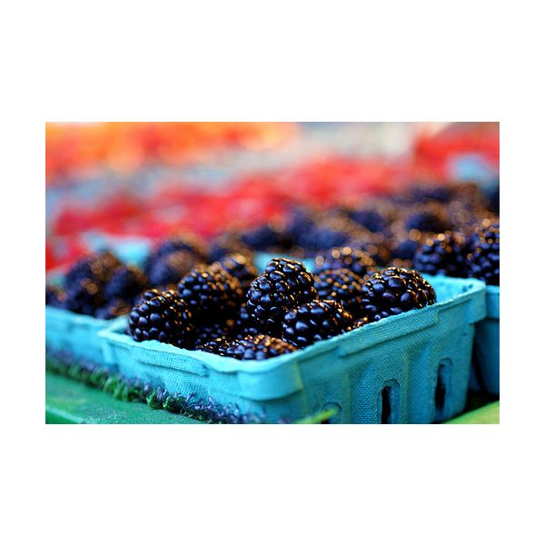 Beneficial Foods to Eat for Rosacea: Quell Skin Flare-Ups with Proper Diet