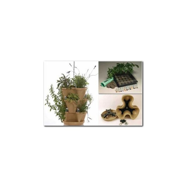 Herb Kits Review: Easy Kits for Growing an Indoor Herb Garden