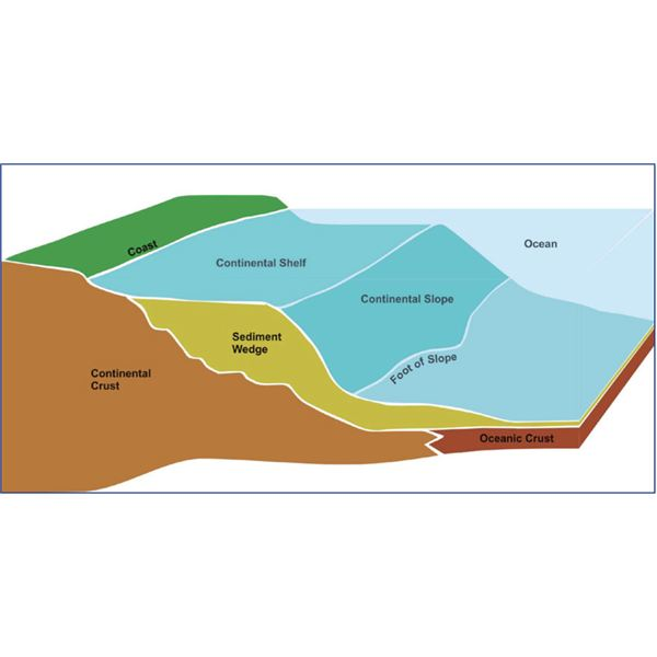 Ocean floor topography and features of the ocean floor for Sentence of floor