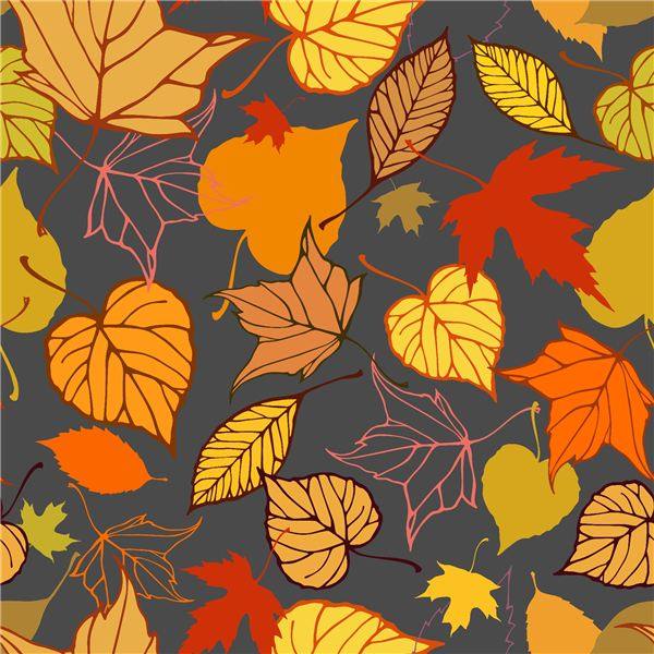 Preschool Fall Theme:  Poem, Fingerplays and Activities With Leaves