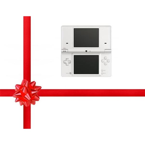 Holiday 2010 Buyer's Guide: Top Nintendo DS Games - Part 1