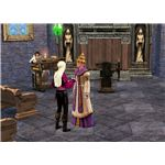 The Sims Medieval divorce by Jacoban Priest