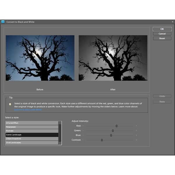 Adobe Photoshop Elements - Convert to Black and White