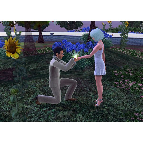 The Sims 3 proposal