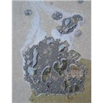 467px-2006-10-24 oil-puddle