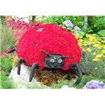 the Grouchy Lady Bug by Eric Carle