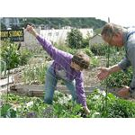 Gardeners at Interbay P Patch by Joe Mabel