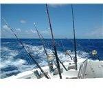 Rod Fishing Club