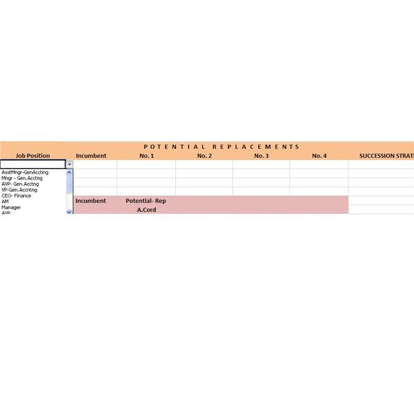 succession planning template with drop down sample