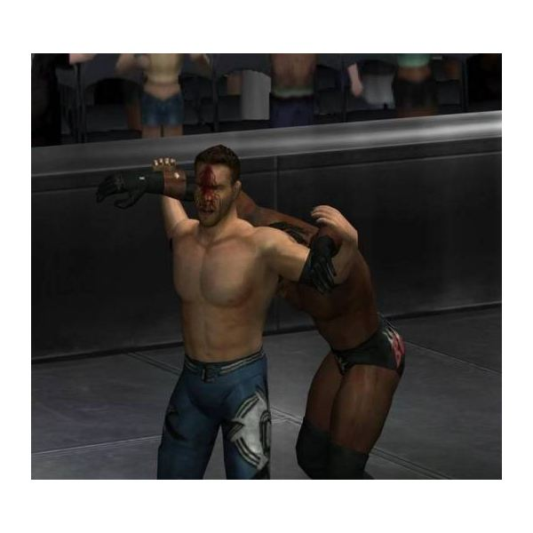 Most moves in the game looked pretty painful, especially when executed outside of the ring.