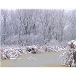 collection-winter-backgrounds-lake2