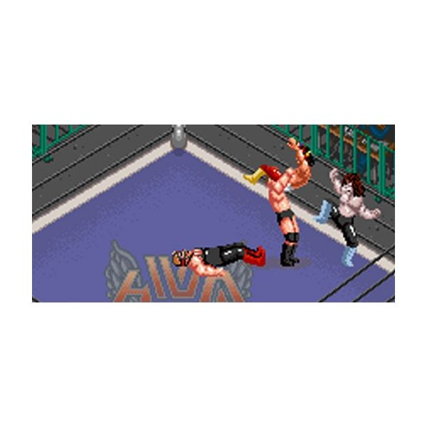 Story mode in Super Fire Pro Wrestling Special ended with your character killing himself.